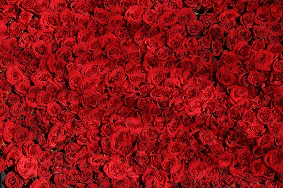Тайна четного количества цветов - разбираемся