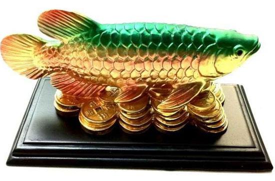 Рыбка аравана для привлечения удачи